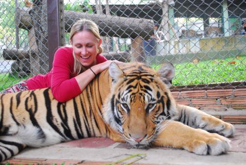 Tiger dating website